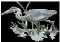 Crane from Logo