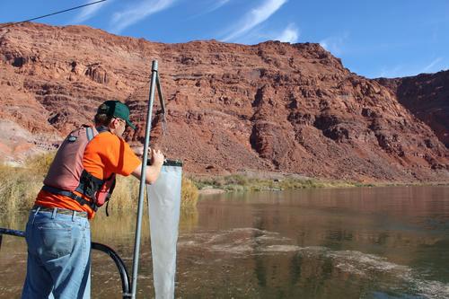 Water Flow Measurement USGS