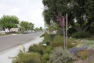 Stormwater Management After - Credit: Council for Watershed Health