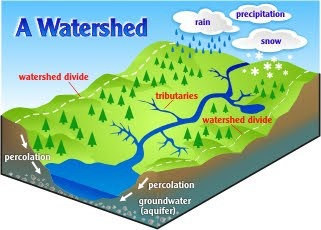 The Verde River Watershed Friends Of The Verde River