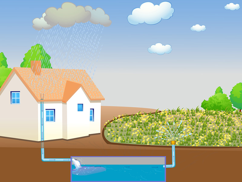 Home with Rainwater Harvesting System