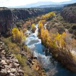 Middle Verde River by Doug Von Gausig