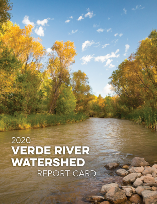 cover of the watershed report card