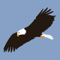 bald-eagle-clip-art