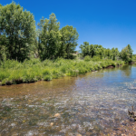 Efforts to sustain Verde River get a boost with $1.2 million grant