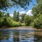 This water program has kept almost 10 million gallons in the Verde River. Here's how